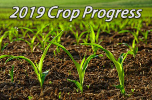 crop-progress